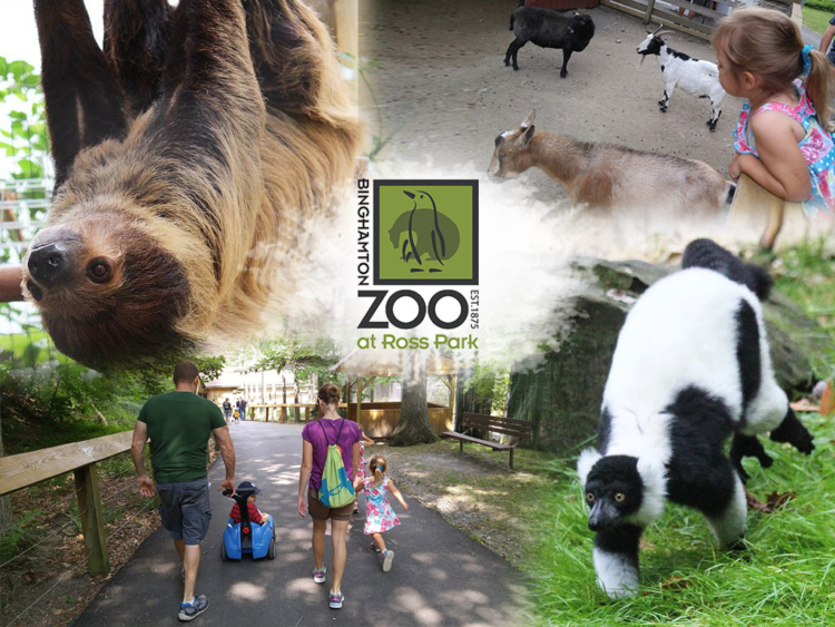 Binghamton Zoo at Ross Park Joins BiziFit