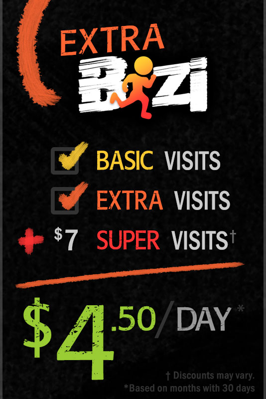 Extra Bizi Pricing