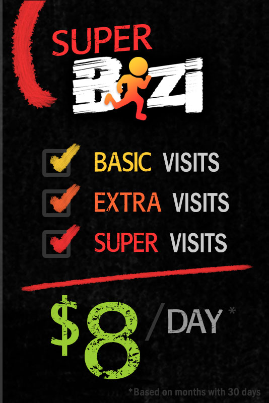 Super Bizi Pricing